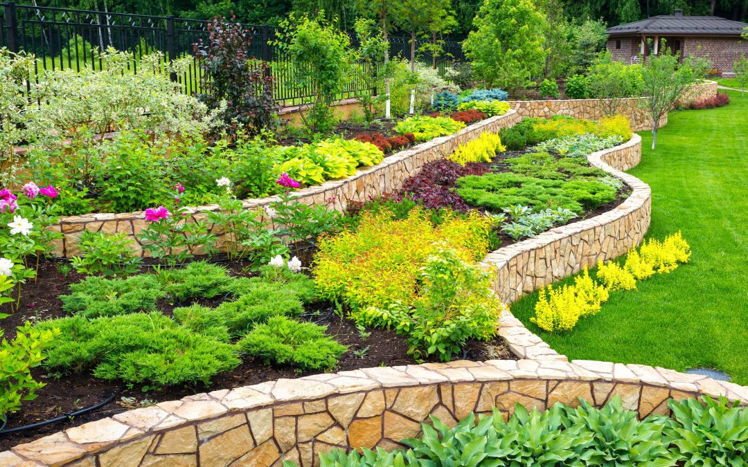When to mulch borders and what to mulch borders with