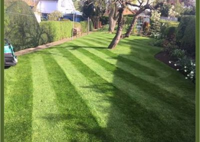 How to apply autumn lawn feed